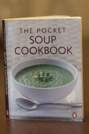2011-02-07 pocket soup 001